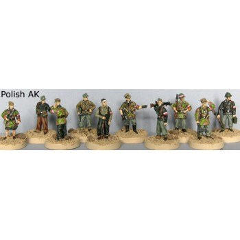 WWII Polish Home Army (ak)